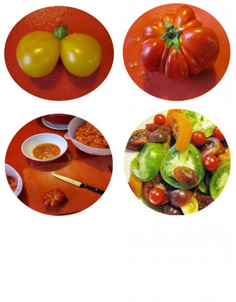 Kreise Tomaten 2