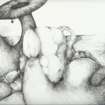 Carnivorus